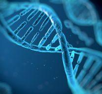 Skłonności genetyczne dopowstawania chorób nowotworowych