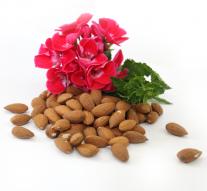 Migdały – bogactwo wartości odżywczych